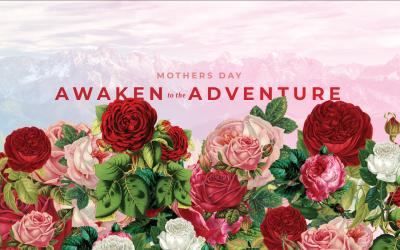 Awaken to the Adventure | Alisa Walter